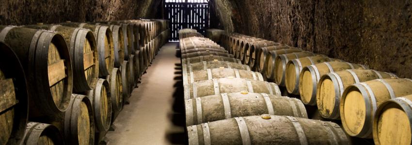 Secret Cellars and Wine Tasting spots